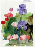 Geburtstagskarte - Iris und Steinnelken