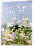 Taufkarte - Gänseblümchen