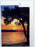 Trauerkarte - Baum am See