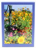 Kartenbox - Blumen