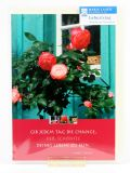 Geburtstagskarte - Rosen vor Fenster