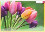 Neutrale Karte - Tulpen
