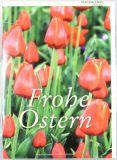 Osterkarte - Tulpenmeer